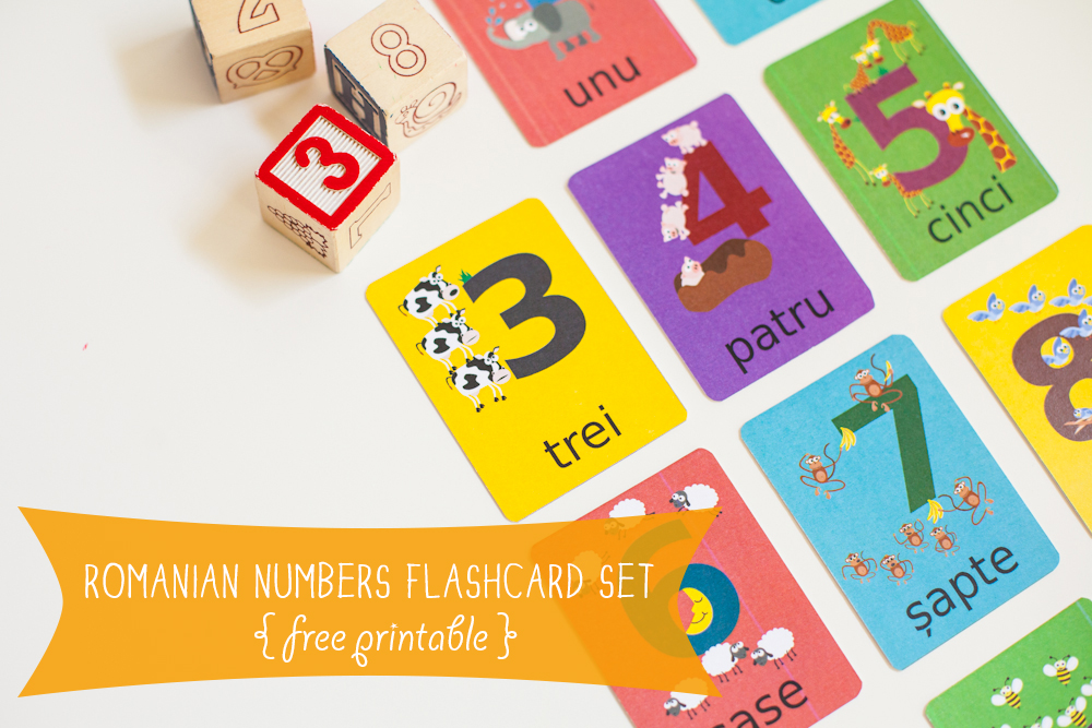 Gus On The Go Romanian Printable Numbers Flashcards