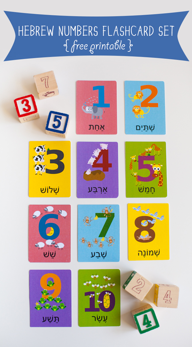 Gus on the Go Hebrew Numbers Flashcard Printable