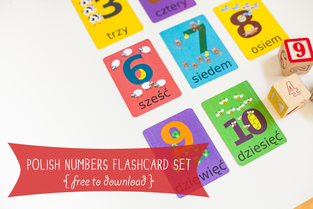 Gus on the Go Polish Numbers Flashcard Printable