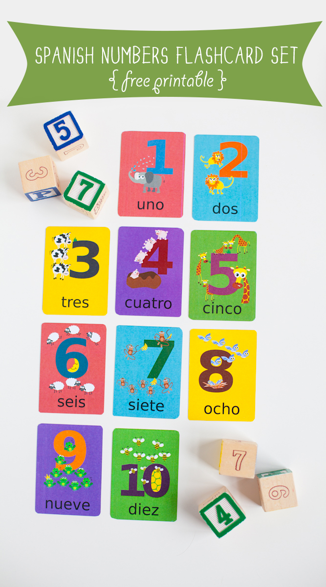 image relating to Spanish Flashcards Printable called Spanish Quantities Language Printable Gus upon the Shift language