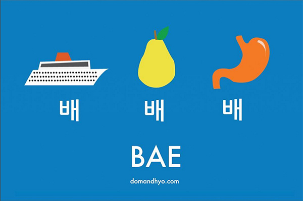 Dom-Hyo-Bae